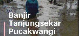 VIDEO Banjir Tanjungsekar Pucakwangi Pati